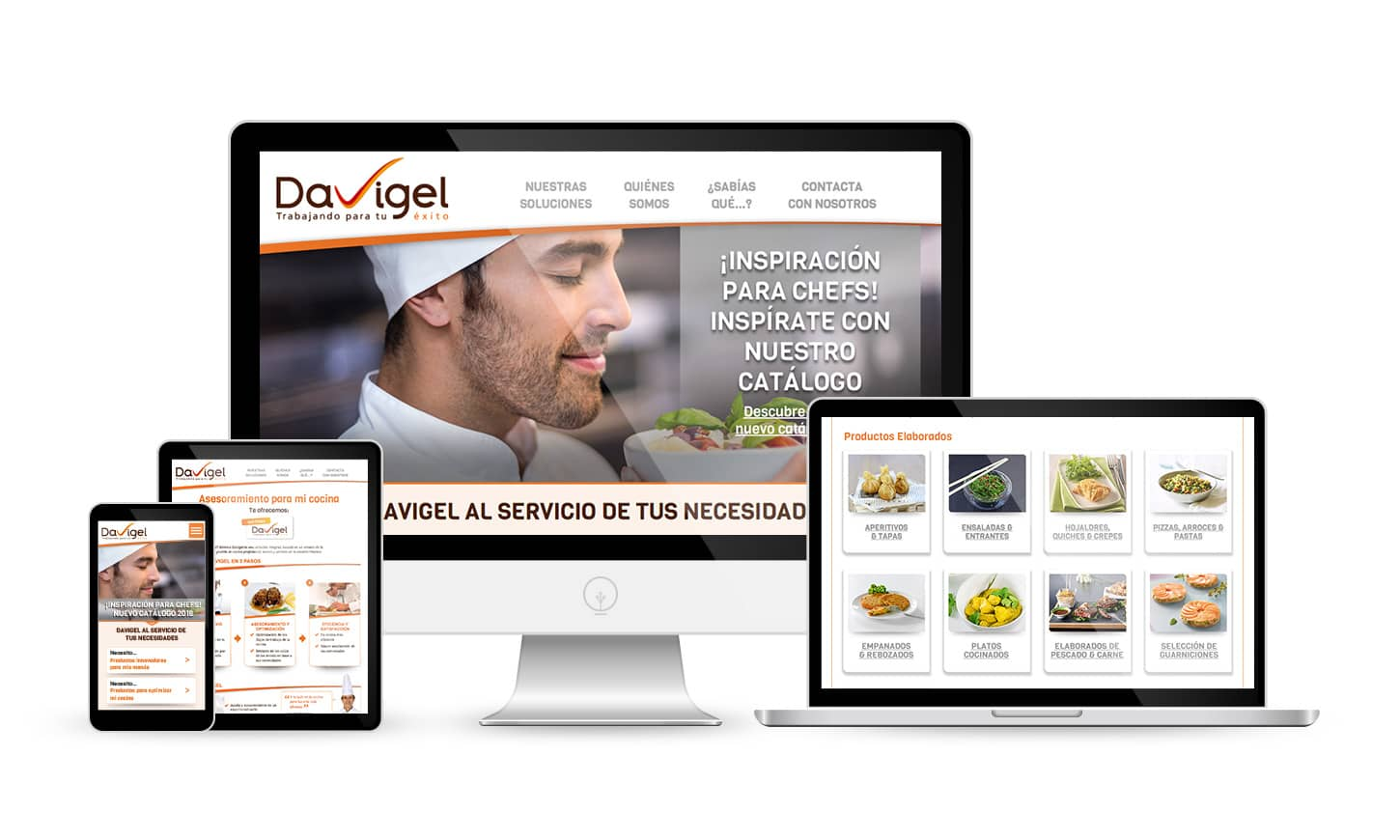 Website Davigel.es